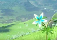 botwflowerzelda